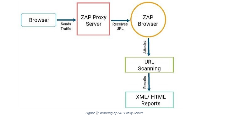 Working of ZAP Proxy Server